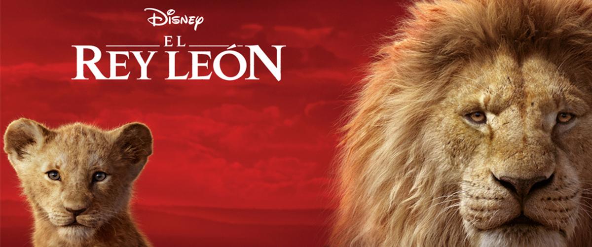 Banner rey leon